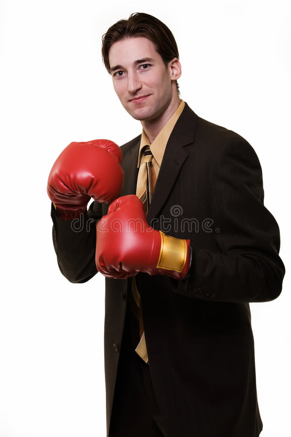 Business Boxer Royalty Free Stock Photos