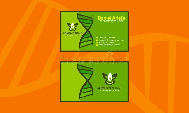 Business Card Clean Modern Template Vector vector illustration