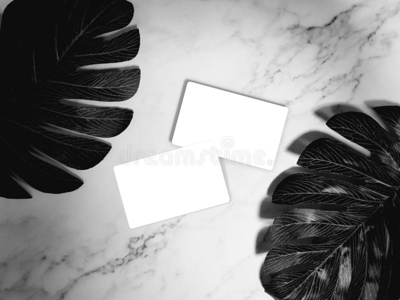 Business card mock-up. white blank business cards on white marble background with tropical palm leaves. template, monotone color. Business card mock-up. white stock images