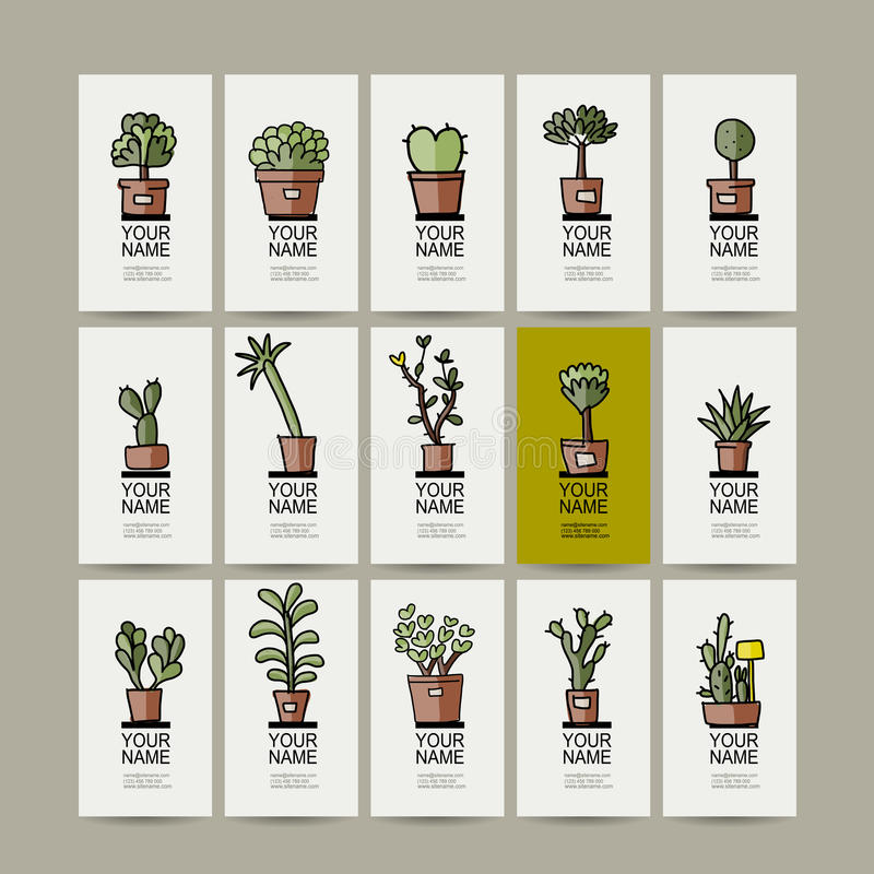 Business cards with cactus in pots, sketch for royalty free illustration