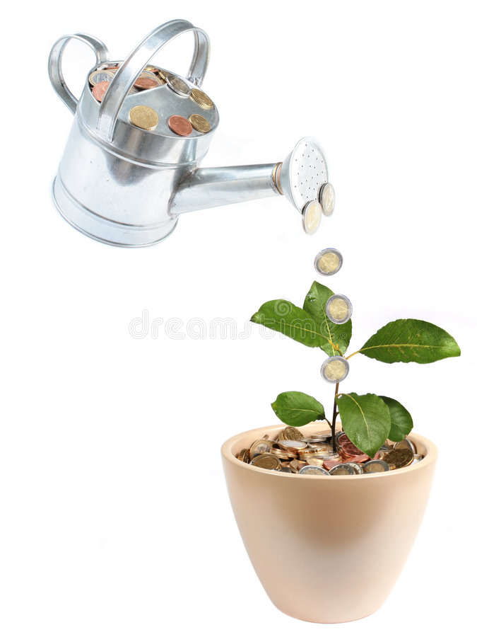 Business concept. Watering full of money. Plant growing from bucket full of coins stock images