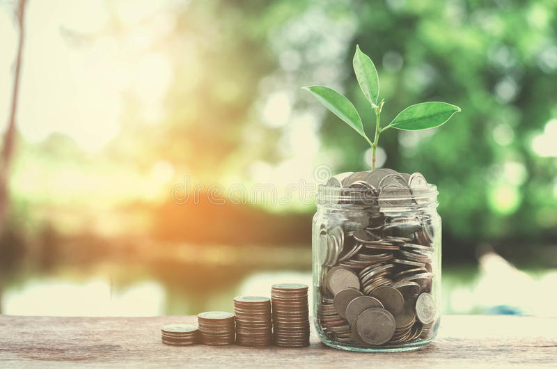 Business concept money glass and growht small tree. Business concept money of glass and growht small tree royalty free stock image