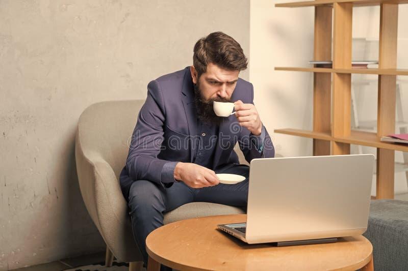 Business correspondence. Modern businessman. Businessman work laptop. Responding business email. Surfing internet stock images