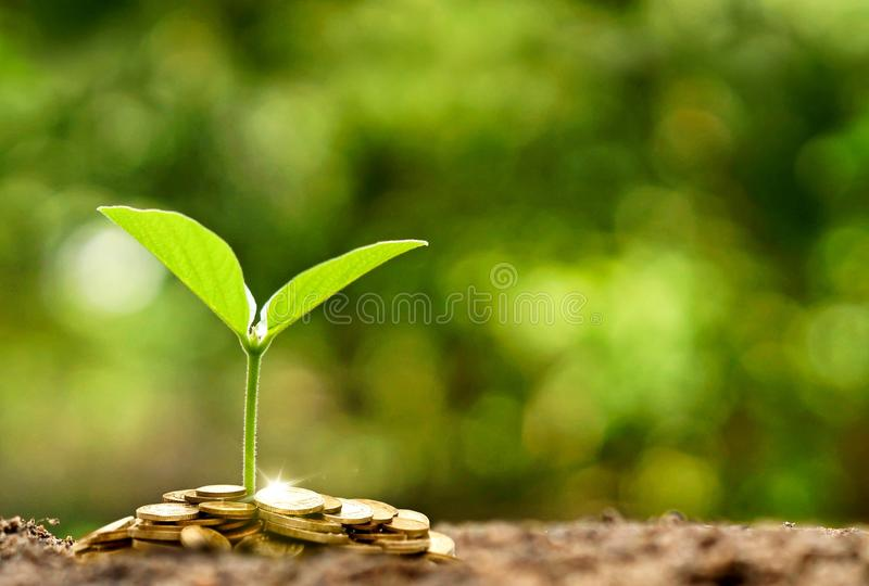 Business with csr practice royalty free stock photos