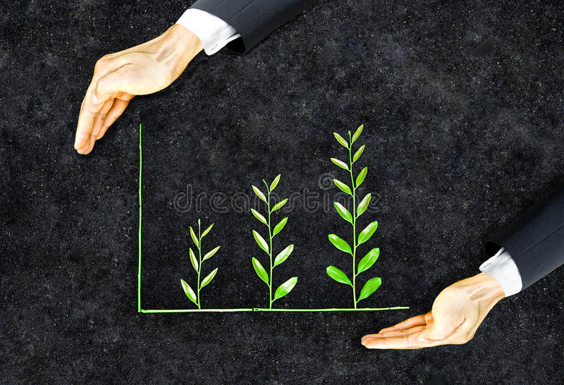 Business ethics. / Hand of a businessman holding tree arranged as a green graph on soil background / Sustainable development / Corporate social responsibility royalty free stock images