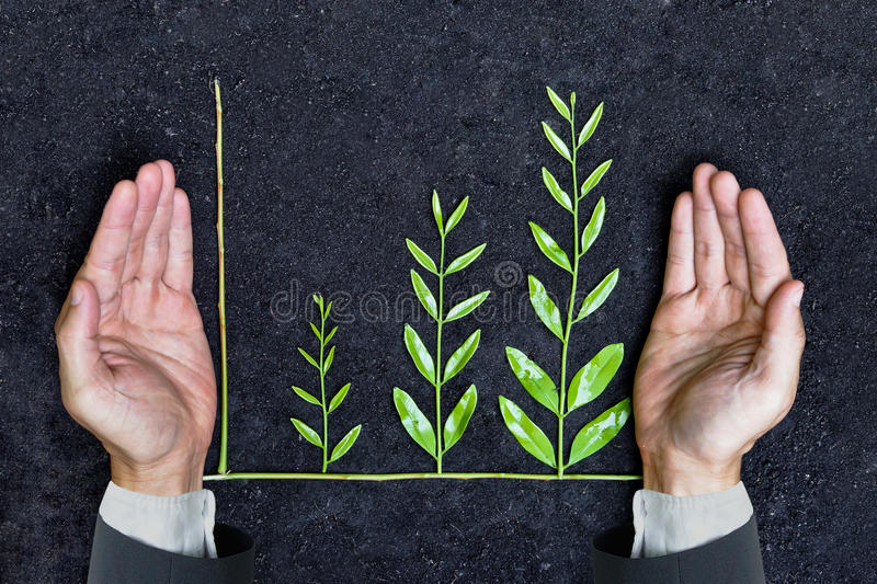 Business ethics. / Hand of a businessman holding tree arranged as a green graph on soil background / Sustainable development / Corporate social responsibility royalty free stock photo