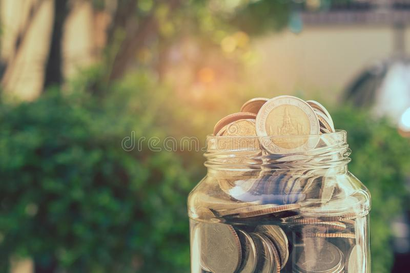 Business and Financial Concept : Close up money coins in savings money glass jar with green bush in the background. stock photography