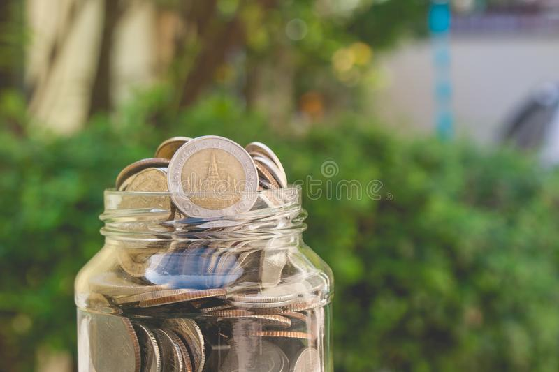Business and financial concept: close up money coins in savings money glass jar with green bush in the background. royalty free stock image