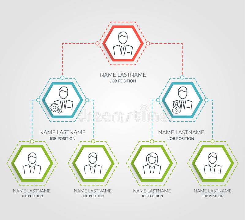 Business hierarchy hexagon chart infographics. Corporate organizational structure graphic elements. Company organization vector illustration