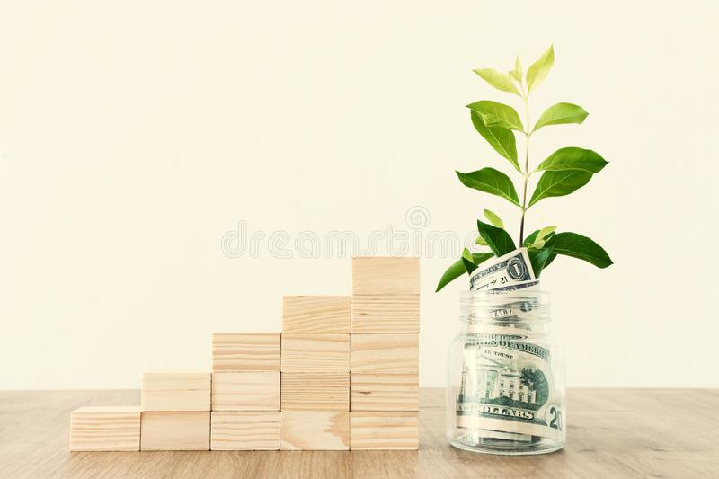 Business image of plant growing in savings jar, money investment and financial growth concept.  royalty free stock images