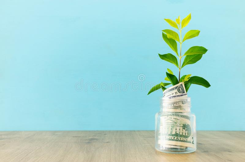 Business image of plant growing in savings jar, money investment and financial growth concept.  stock photo