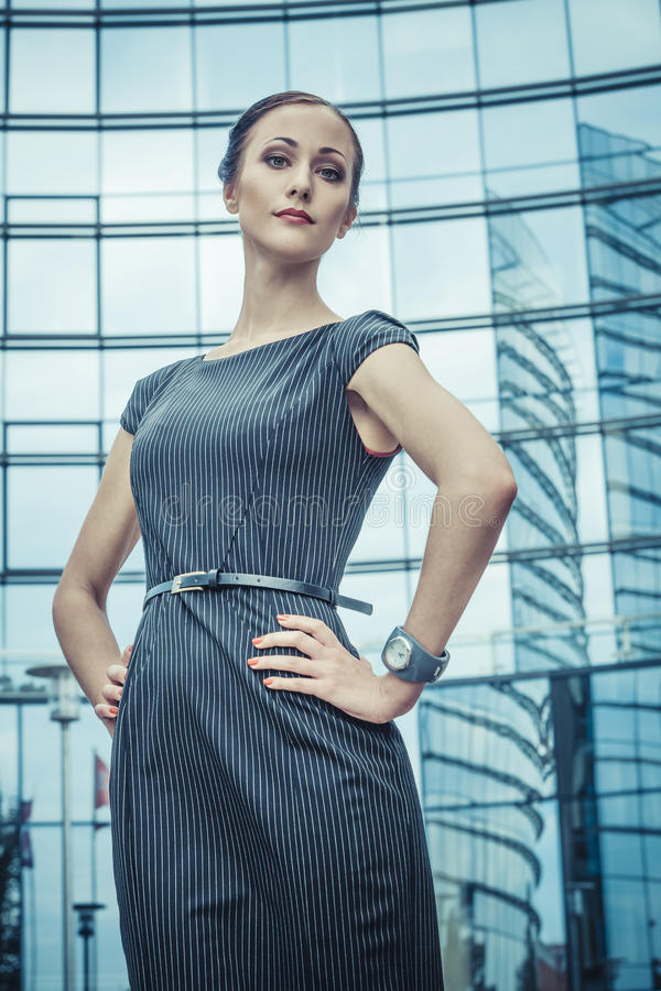 Download Business Lady stock photo. Image of female, dollar, career - 28898068
