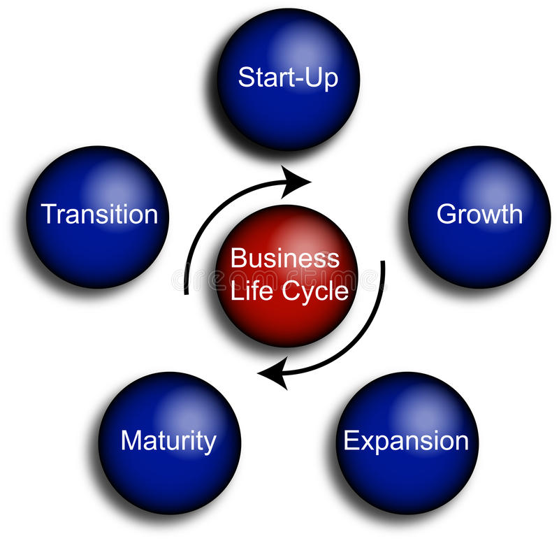 Business Life Cycle Diagram. Typical Diagram of the business life cycle royalty free illustration