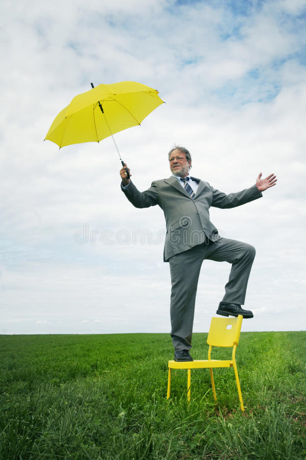 Download Business man stock image. Image of insurance, green, nature - 10582003