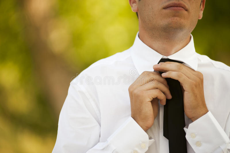 Download Business Man Stock Images - Image: 25798324