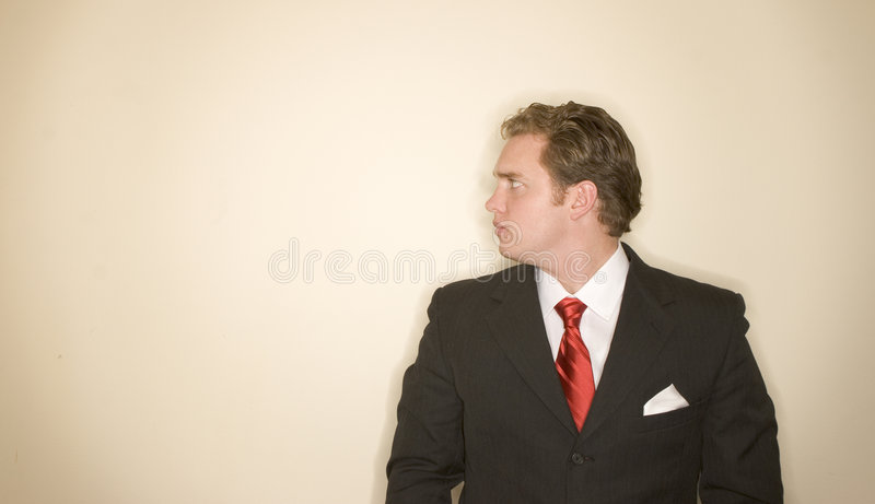 Business man 3 royalty free stock images