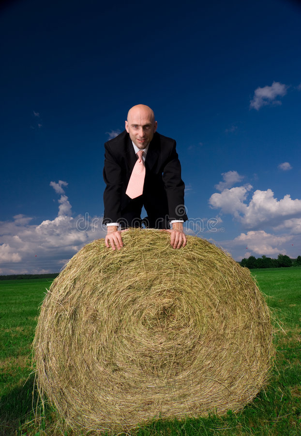Download Business Man On A Bale Of Hay Stock Photo - Image of kneel, nature: 5417354