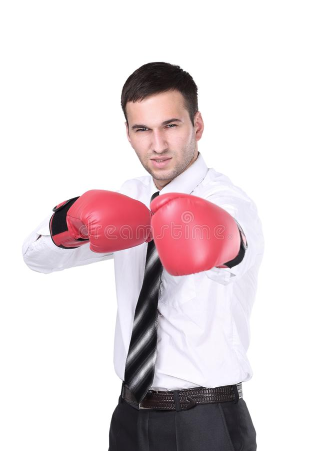 Business man with boxing gloves is ready for corporate battle. Businessman ready to fight with boxing gloves over white background. Looking at camera royalty free stock photo