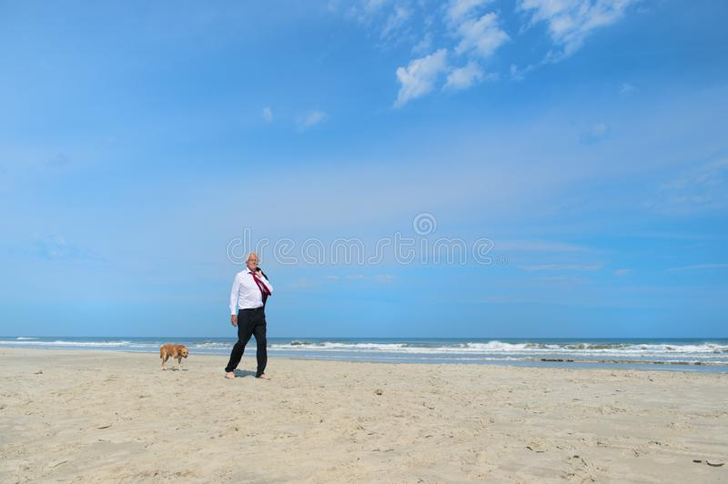 Business man with dog at the beach royalty free stock photos