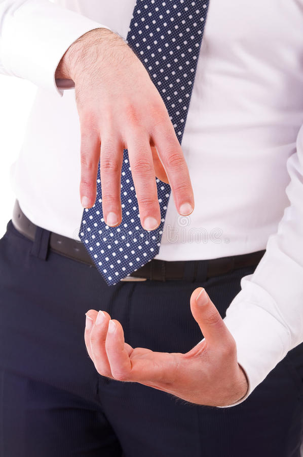 Download Businessman Gesturing With Both Hands. Stock Photo - Image: 30074420