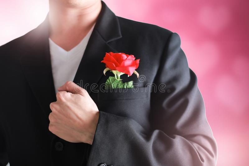 Business man having a red rose on pink valentine concept. stock photo