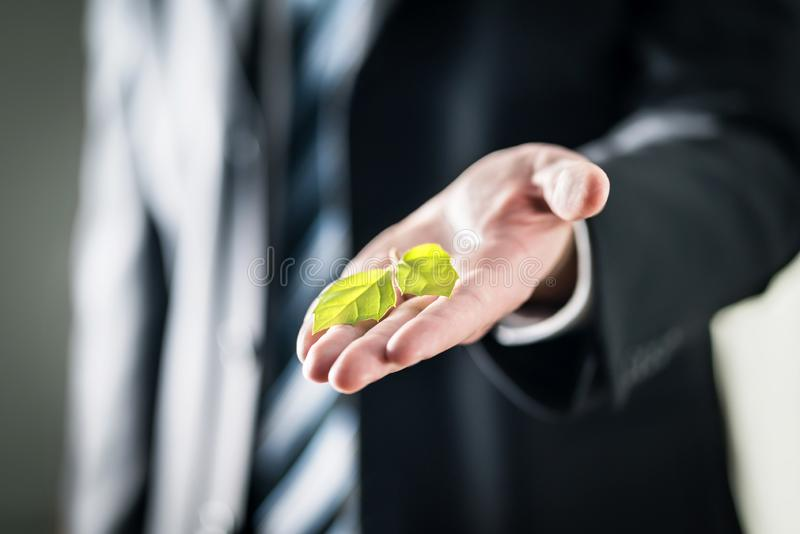 Business man holding green leaf on hand. Nature conservation, global warming, climate change and pollution concept. stock images