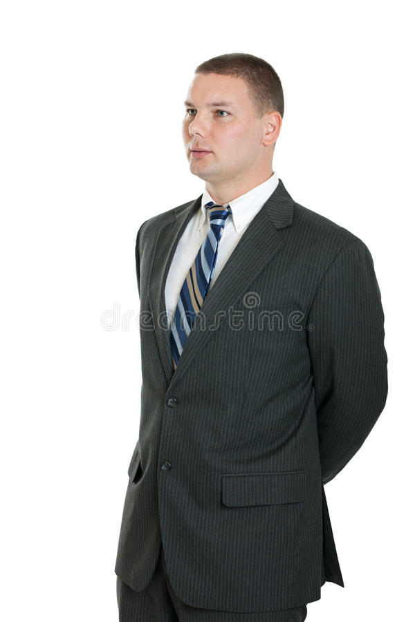 Download Business man portrait stock image. Image of isolated - 23021073