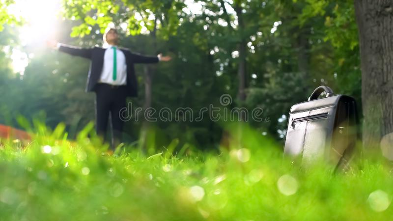 Business man with spread arms greeting sun and nature, environmental friendly stock image