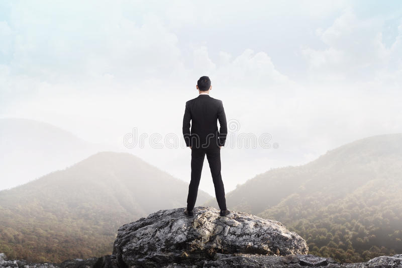 Business man standing on the top of the mountain looking at the. Valley. Business success concept stock images