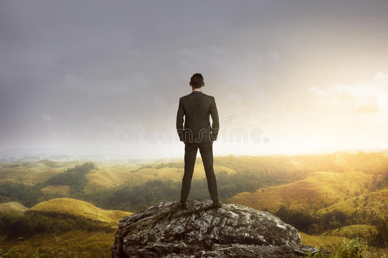 Business man standing on the top of the mountain looking at the. Valley. Business success concept royalty free stock images