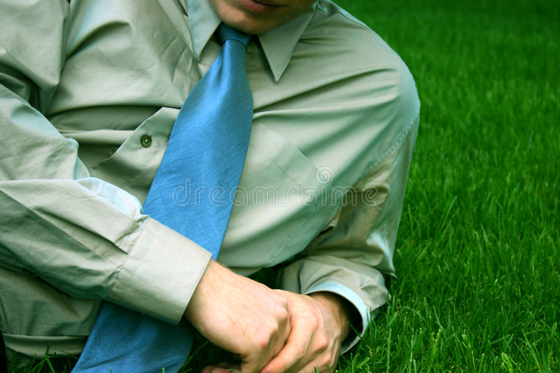Download Business man - tie stock photo. Image of grass, great, business - 3248