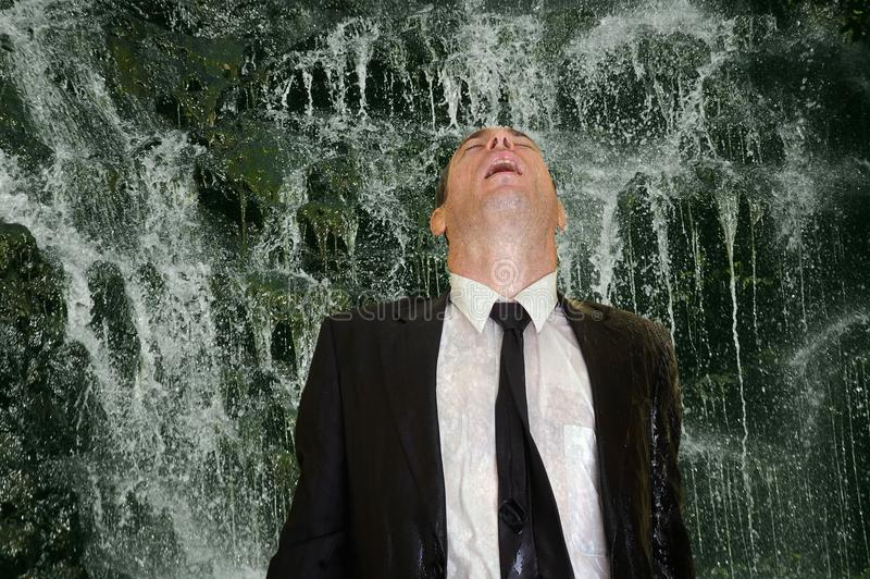Download Business man waterfall stock image. Image of down, male - 15093535