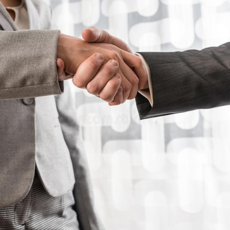 Business man and woman shaking hands royalty free stock image