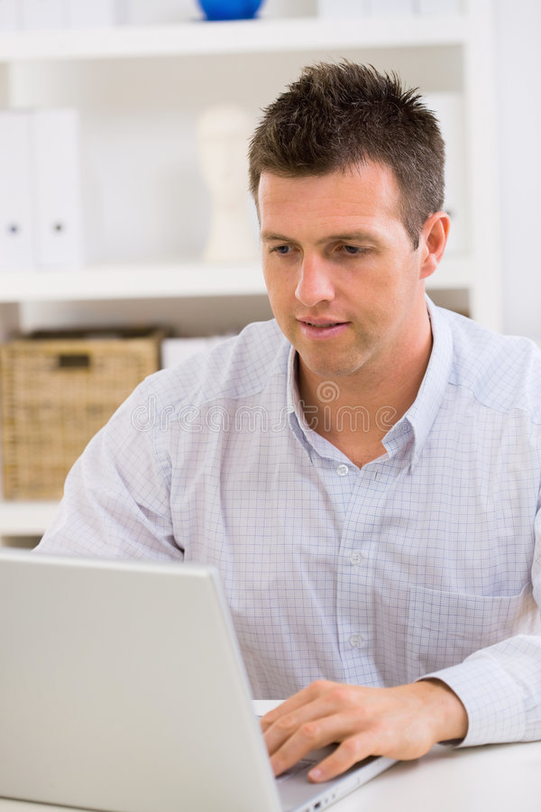 Business Man Working At Home Stock Images