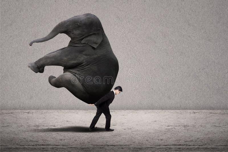 Business Manager niesie słonia na popielatym - przywódctwo pojęcie fotografia royalty free