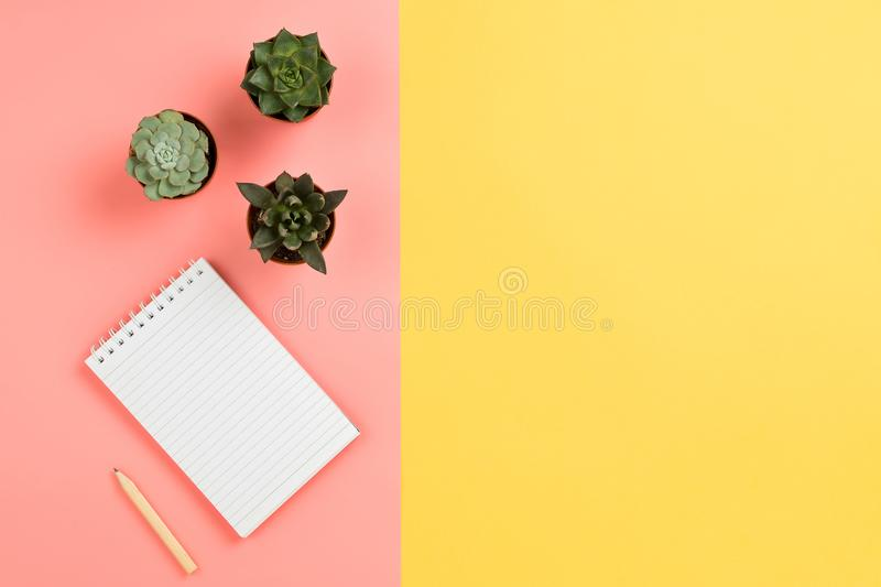 Business mockup with notebook, succulent flowers and pencil stock image