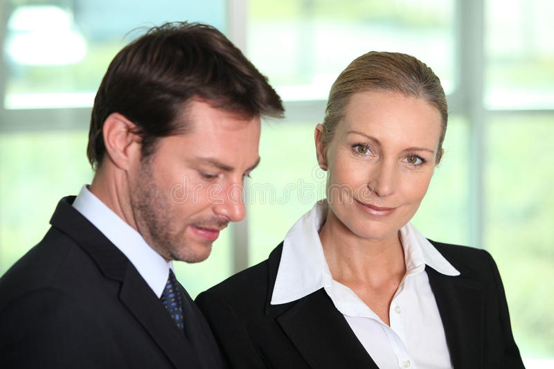 Download Business partners stock image. Image of assistant, colleagues - 25670435