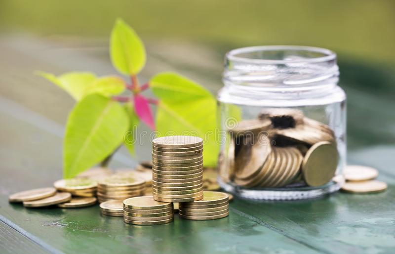 Business success, gold money coins. Stack and jar with leaves stock photography