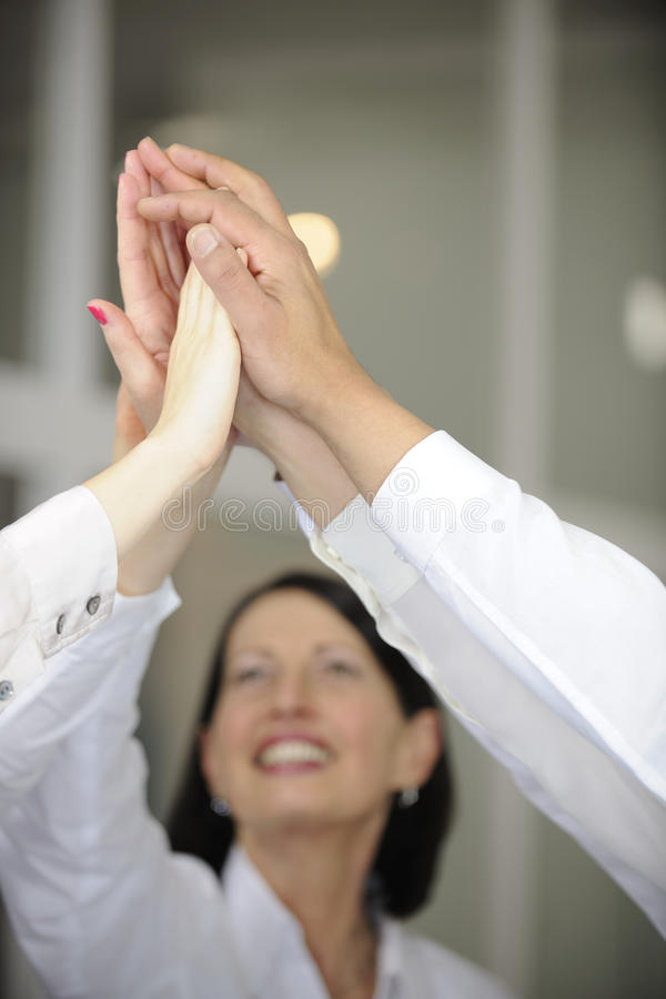 Download Business Team Celebrating Success With High Five Stock Image - Image: 22964817