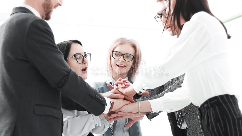 Business team showing their unity while standing in the office royalty free stock images