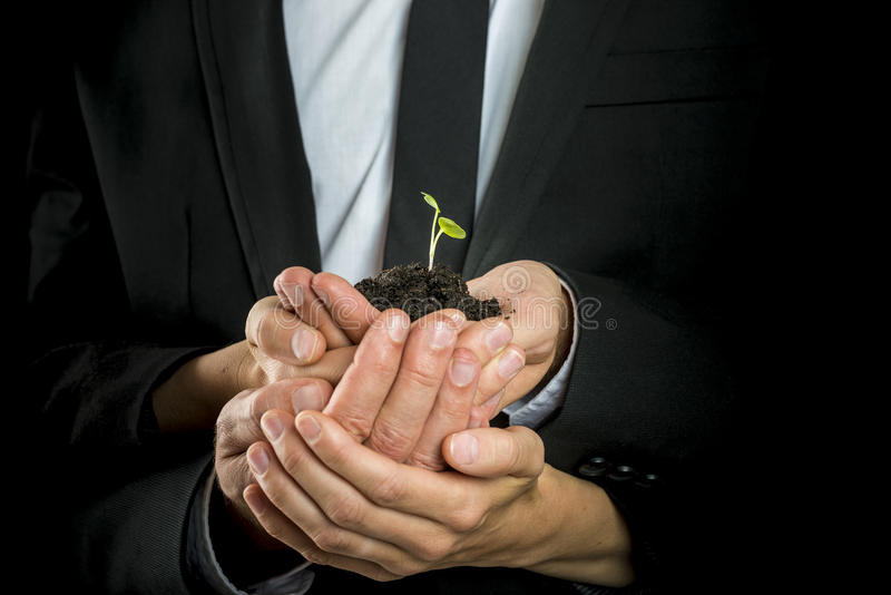 Business vision, start up or teamwork concept. Male and female business partners cupping a green sprout in a pinch of fertile soil royalty free stock photo