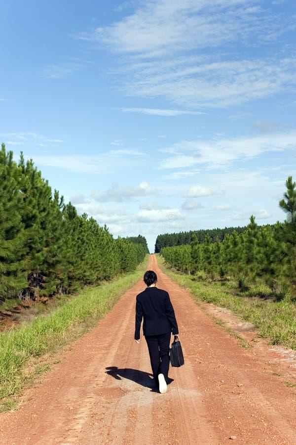 Business Woman. Walking alone stock photo