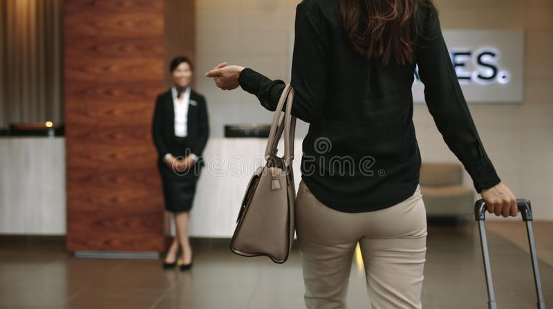 Business woman arriving at hotel with luggage. Rear view of business women arriving at hotel with luggage. Female concierge standing in background for welcoming royalty free stock images