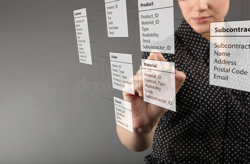 Business Woman Designs A New Database Stock Illustration ...