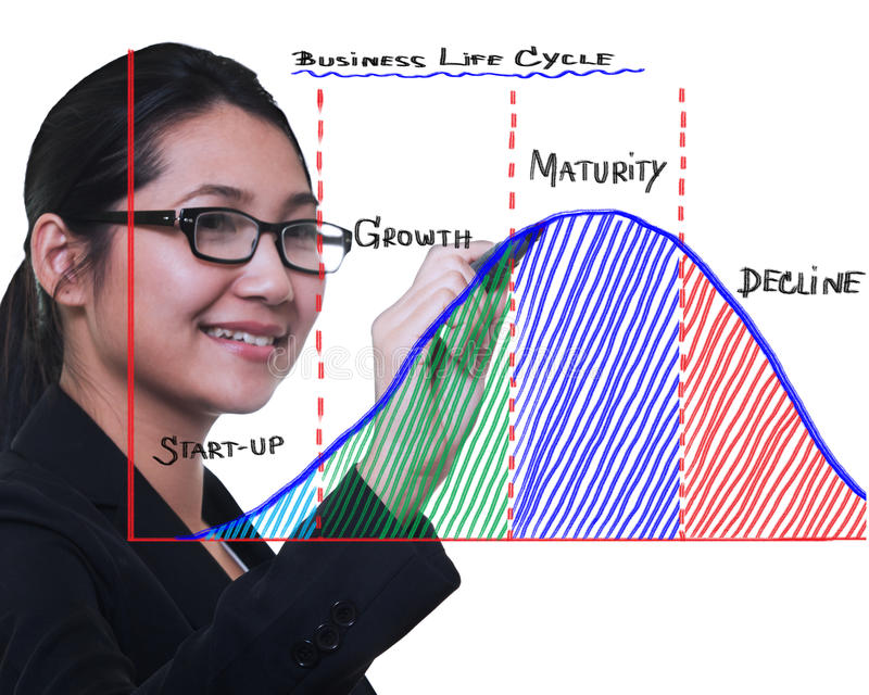 Business woman drawing business life cycle diagram stock photography