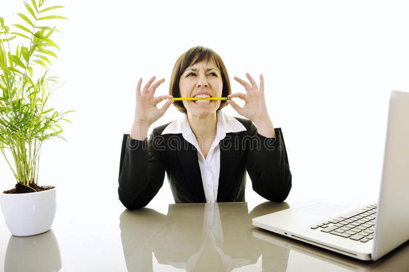 Download Business Woman Working On Laptop Stock Photo - Image: 13167274