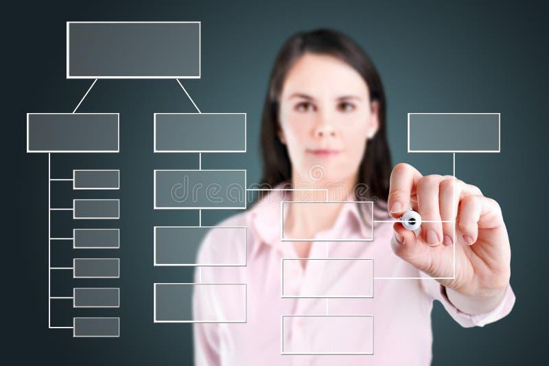 Business woman writing process flowchart diagram. Young business woman writing process flowchart diagram on screen royalty free stock photos