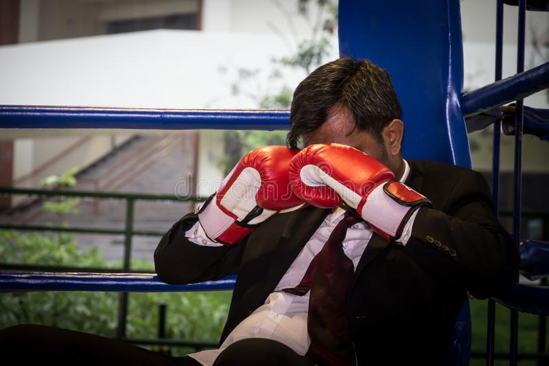 Businessman with boxing stock images