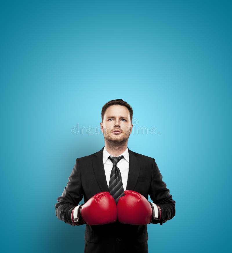 Businessman in boxing gloves. On a blue background royalty free stock photography