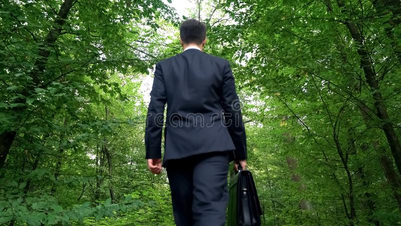 Businessman with briefcase walking in forest, enjoying view, escape from city stock photos